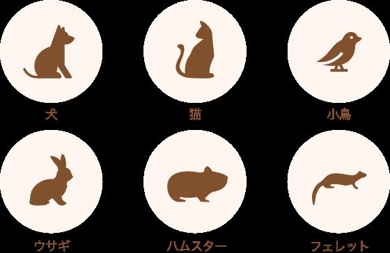 診療対象動物